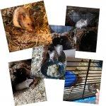 PicsArt_03-20-08.26.33.jpg